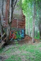 Snart bara skog här